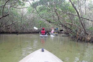 3-22-15 Kayaking 10780